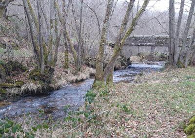 """Ruisseau """"La beauze"""""""